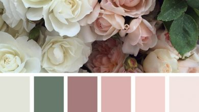 Photo of Find the right color palette for your creative project