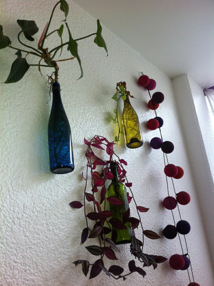 deco bottles plant wall decoration