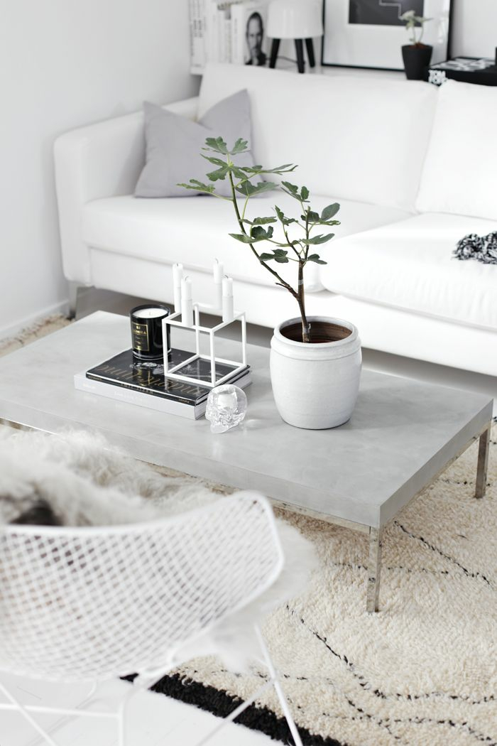 beautiful indoor plants easy-care coffee table concrete decorating potted plant