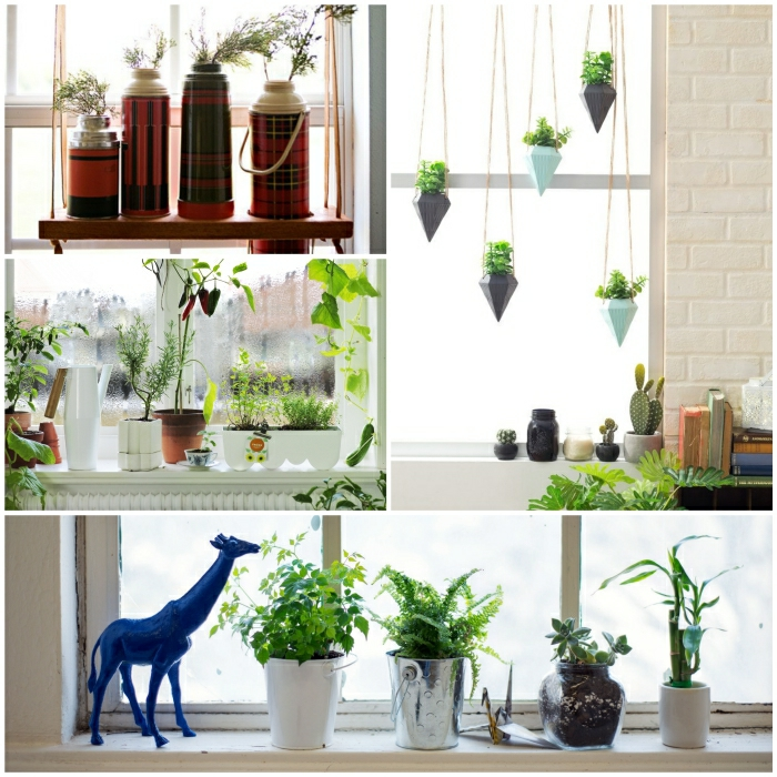 windowsill decor room flowers potted plants decorate window