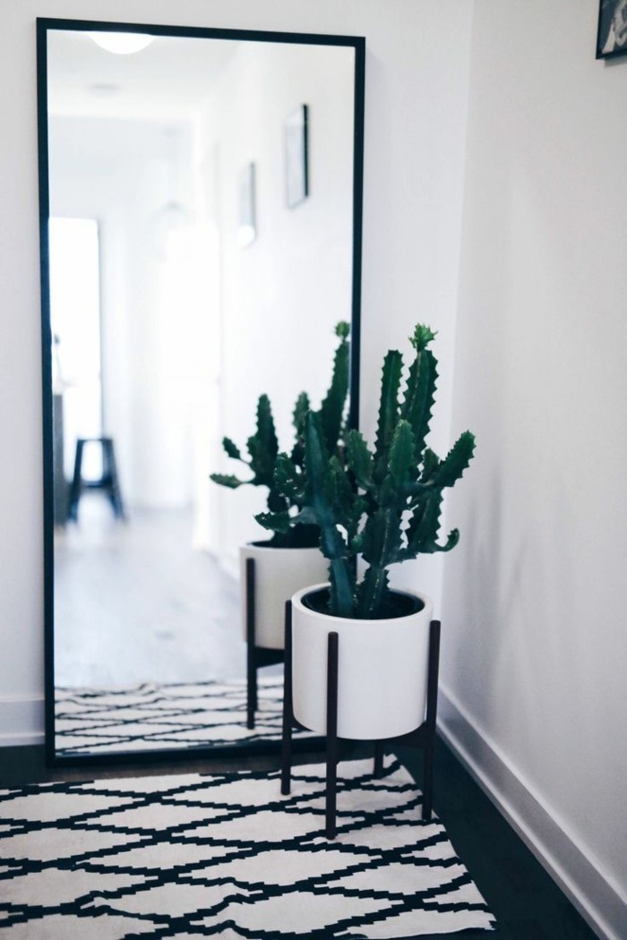 a mirror in the hallway