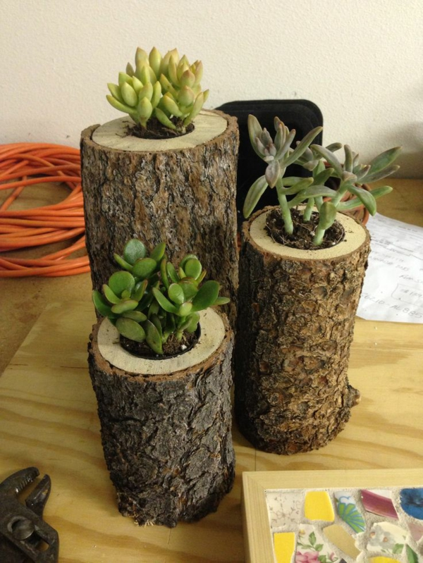 tree trunk deco diy flower pot indoor plants