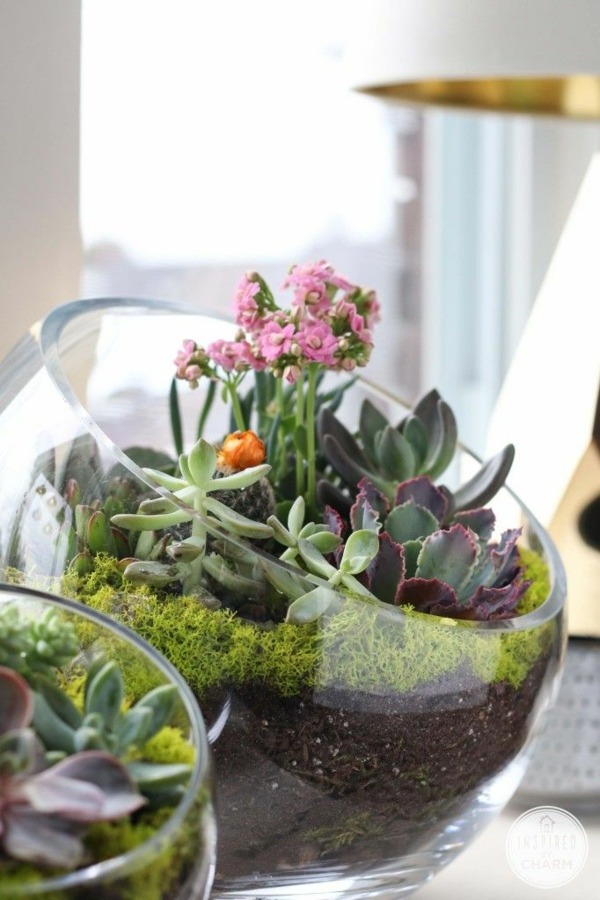 terrarium itself build glass vessels around with opening