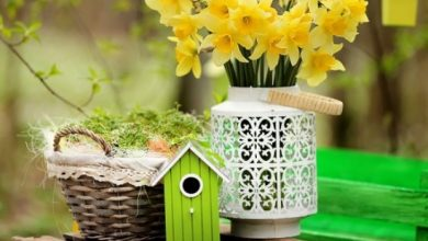 Photo of Easter decorations for outdoors – as you decorate your outdoor area Easter