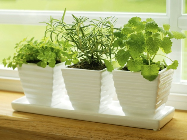 small pots for small kitchen