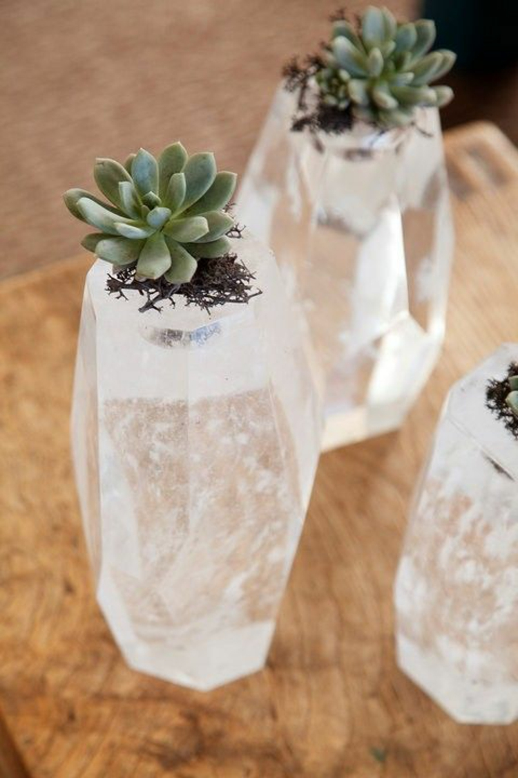 Feng Shui pictures succulents and crystals positive energy