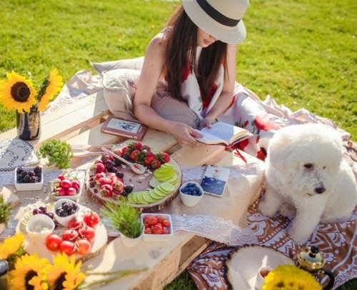 read and write picnic ideas