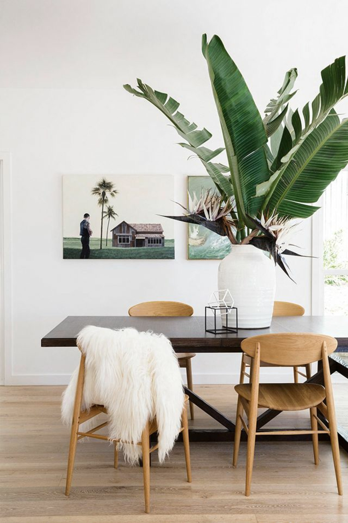 easy-care indoor plants pictures dining table decorating potted plant