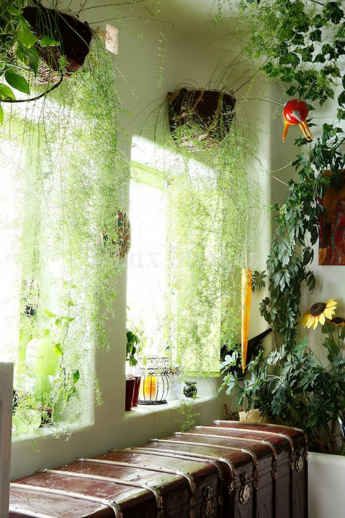 decoration window decorate window decoration room flowers
