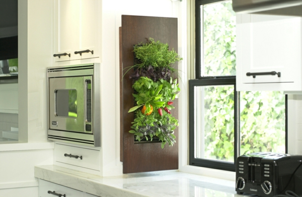 integrated kitchen spices on the window