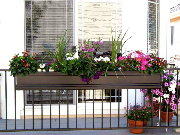 balcony ideas plant flower box design