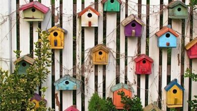 Photo of Decorate the garden fence creatively and interestingly – 33 great examples!