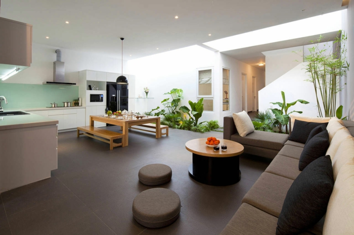 sturdy house plants pictures green living room interior
