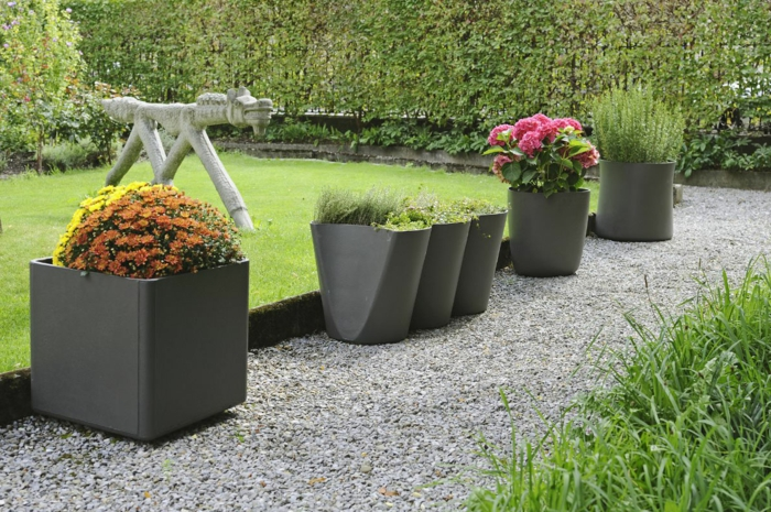 gardening ideas flowers plant container pebbles
