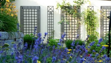 Photo of Trellis – rose arches and other flower supports are visual highlights in the garden