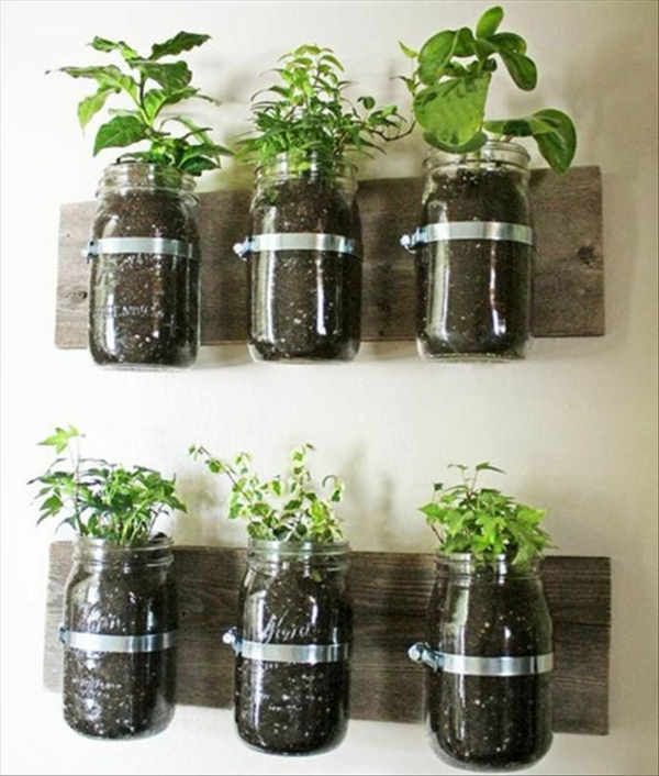 kitchen spices attached to the wall