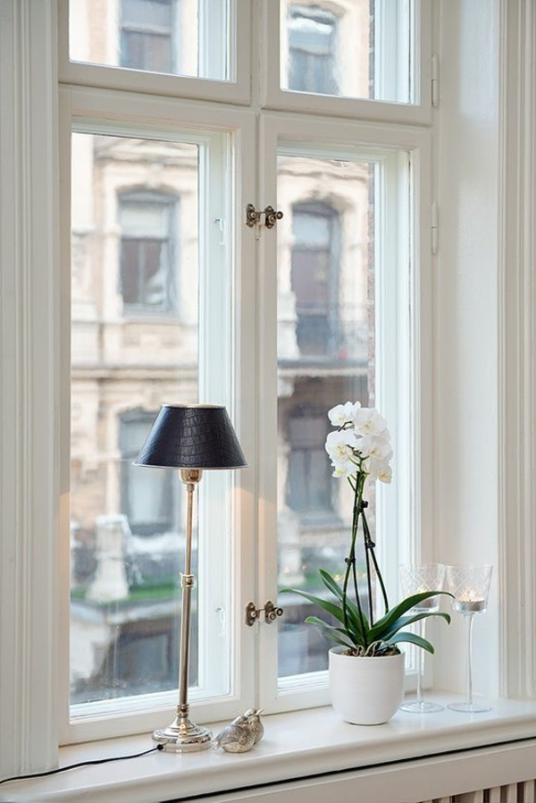 beautiful home decor windowsill decorate plant table lamp