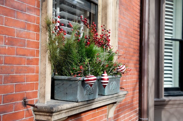 flowerpots green branches red accents