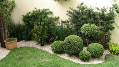 Photo of Garden decoration – classic methods that lead to originality!