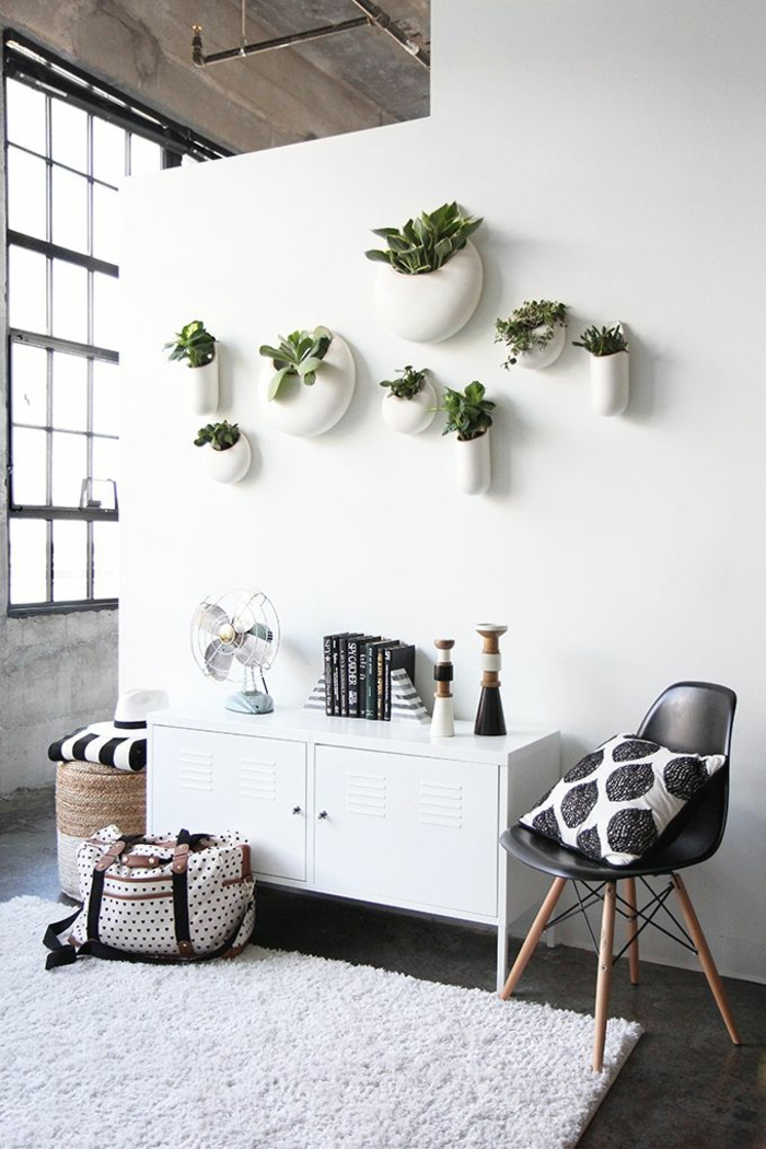 beautiful house plants wall decoration ideas with green plants