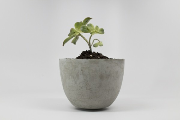 diy planter great pot of concrete