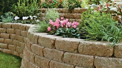Photo of Garden Stones – Ideas on how to give the garden a beautiful look through stones