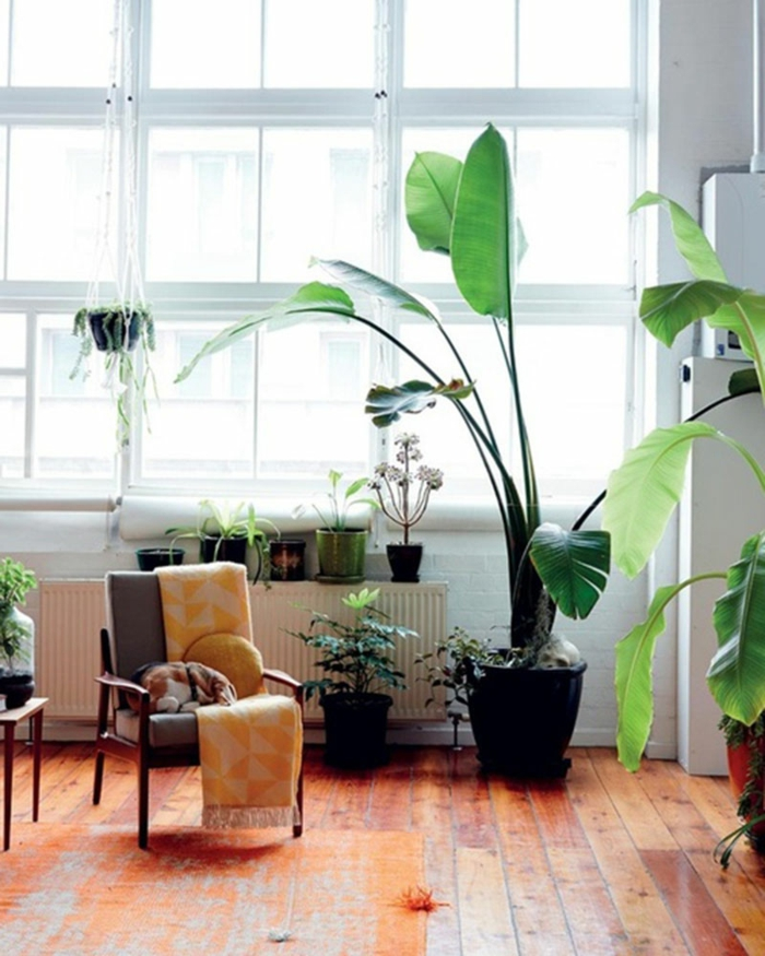 indoor plants relaxation area home ideas potted plants hanging plants
