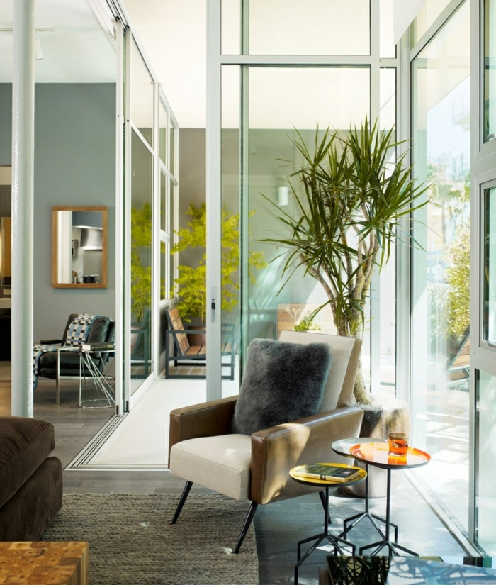 indoor plants living room decoration chic furnishings