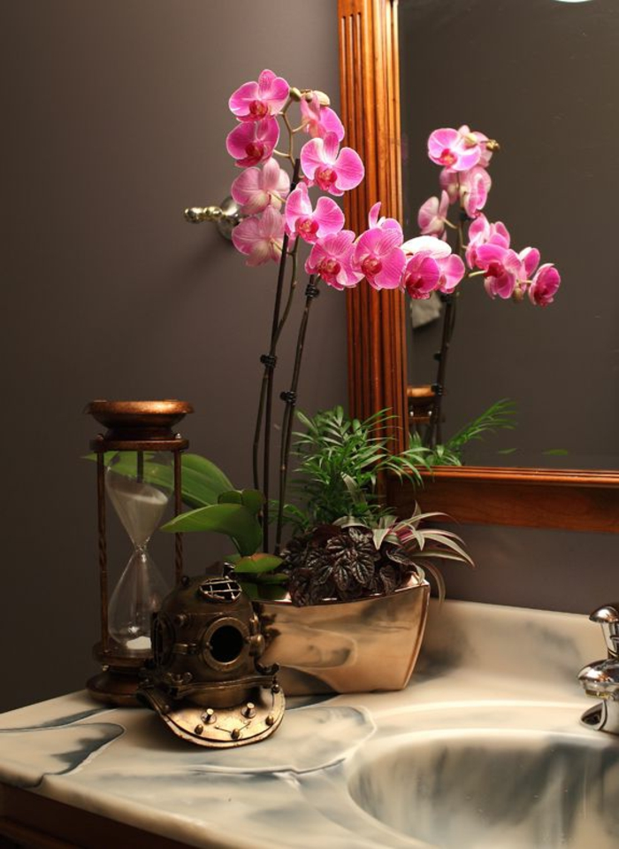 Orchids cultivate indoor plants bathroom decoration ideas