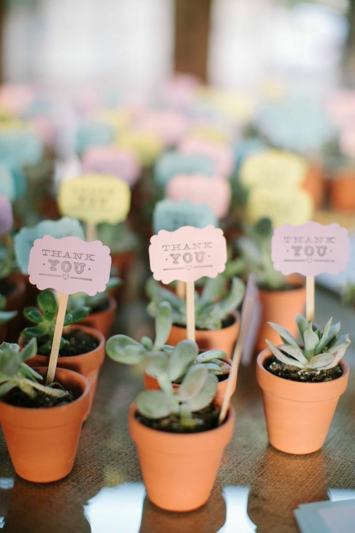Small plant to thank the guests of a wedding