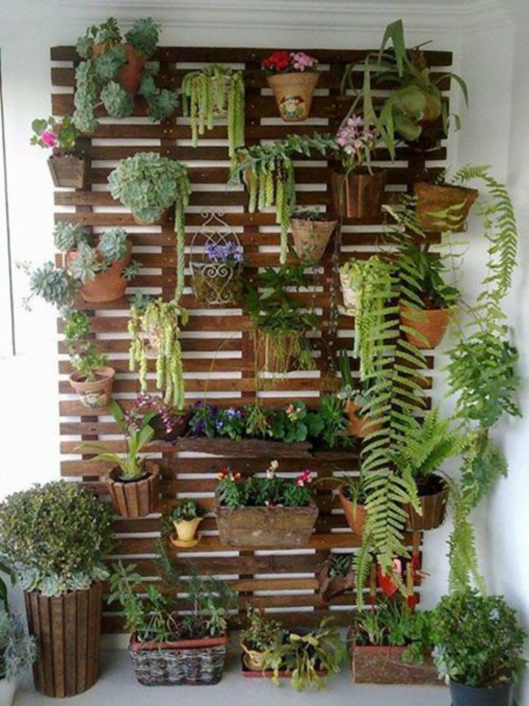 Feng Shui terrace vertical garden positive energy