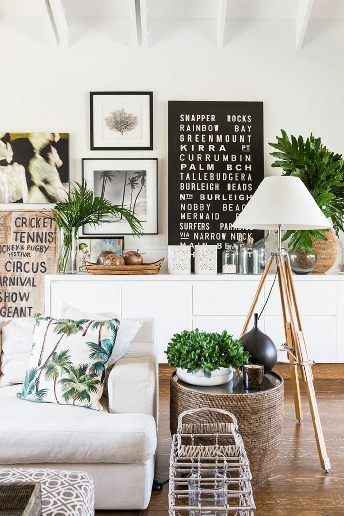 beautiful indoor plants easy care green living room decoration ideas
