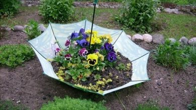 Photo of Make garden decoration yourself: Simple and cheap craft ideas