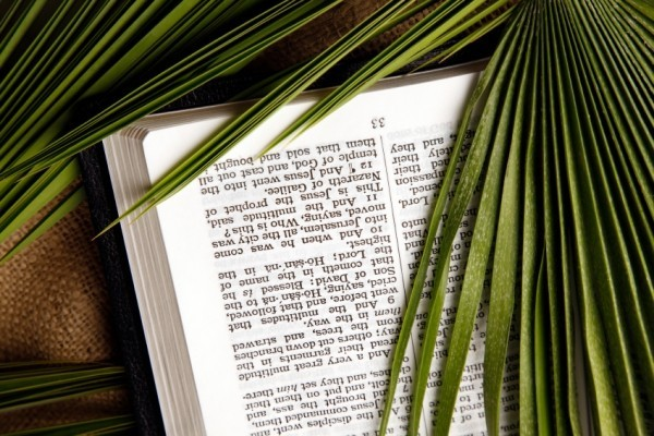 Palm Sunday old Christian tradition lives on