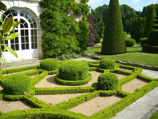 Garden in the French style