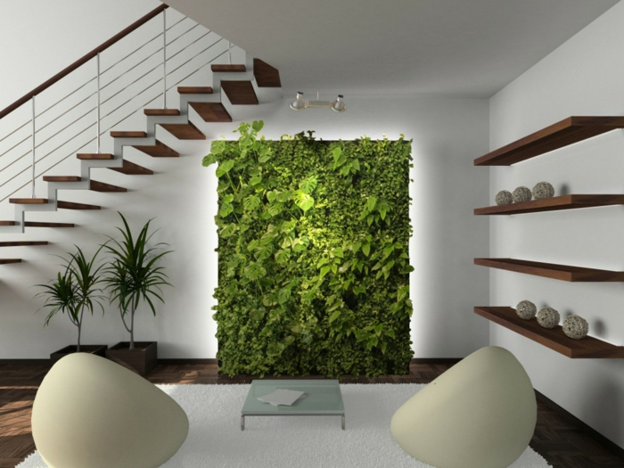 indoor plants living room decorate wall decoration potted plants