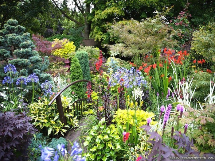 Many plants in the summer garden