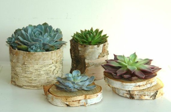 tree trunk deco flowerpot self build succulents