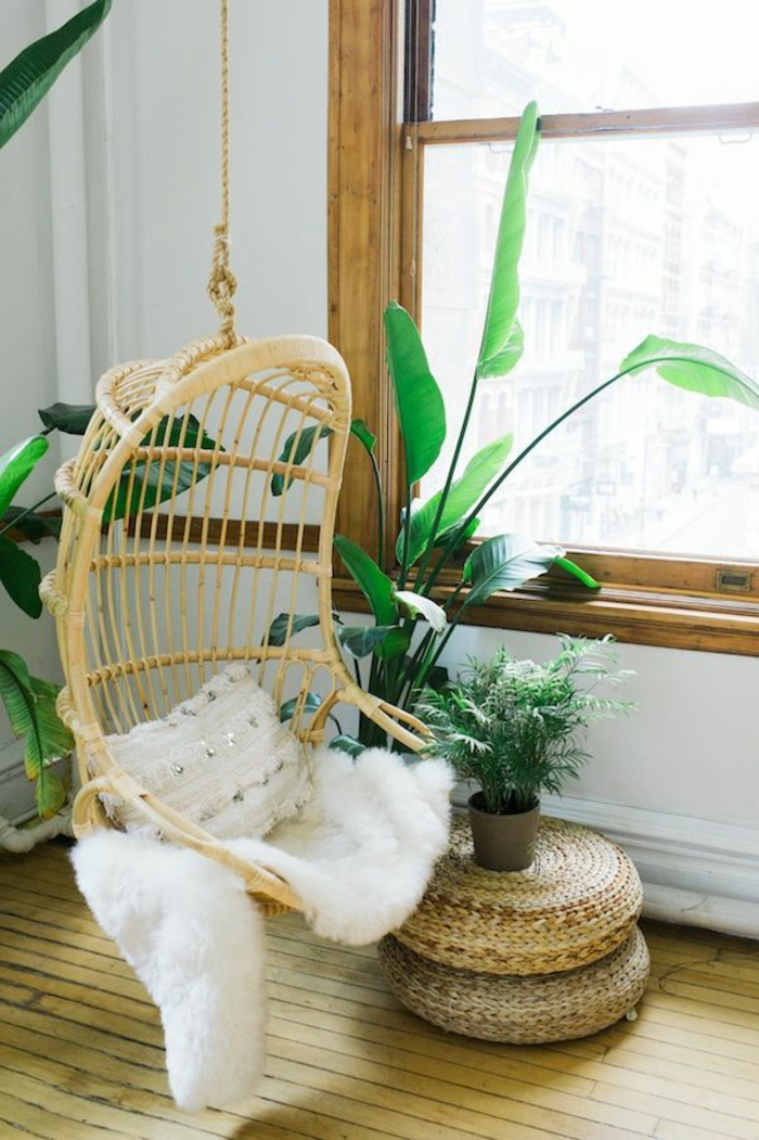 easy-care indoor plants Pictures Hanging wicker chairs