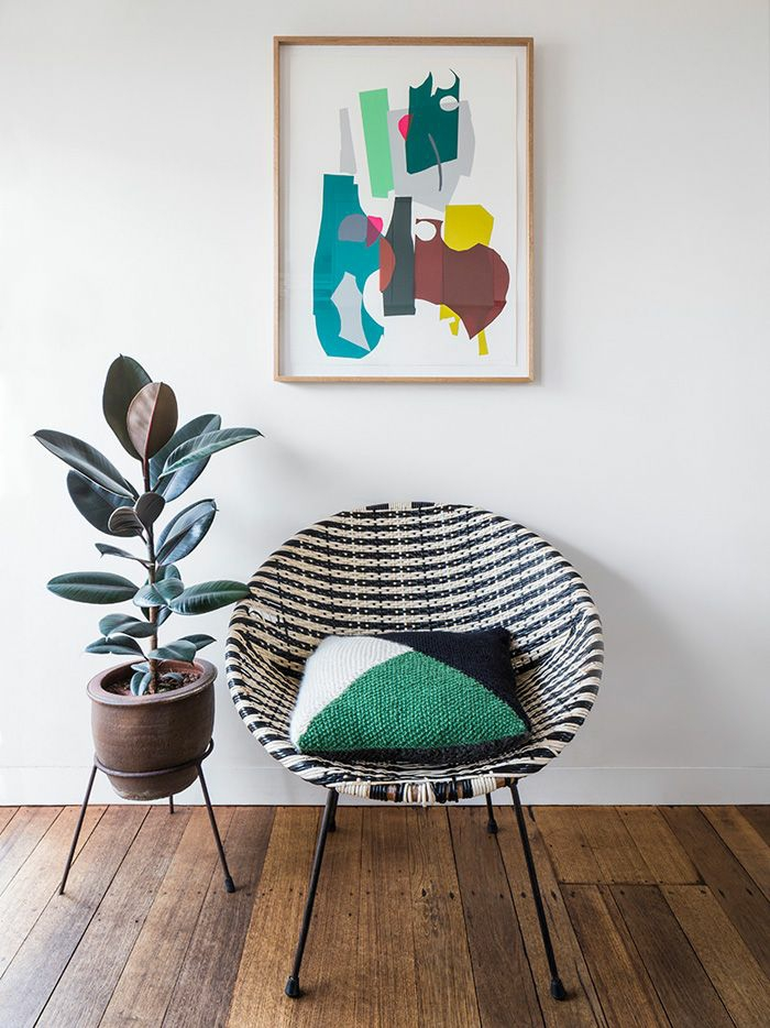 easy-care indoor plants pictures rubber tree living room armchair