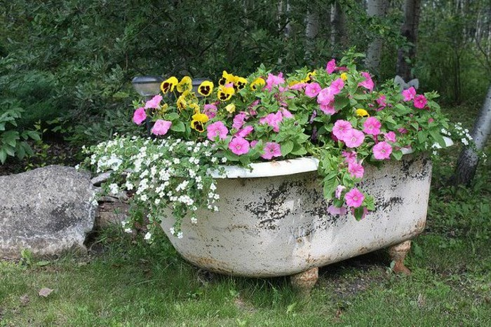 Old bathtub as a flower container