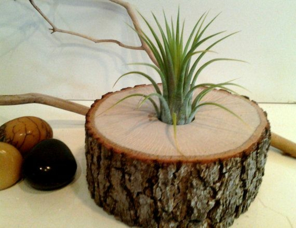 tree trunk decoration diy flowerpot self build succulents