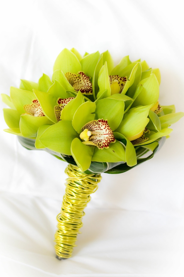 orchid species beautiful bouquet of green orchids cymbidium orchid