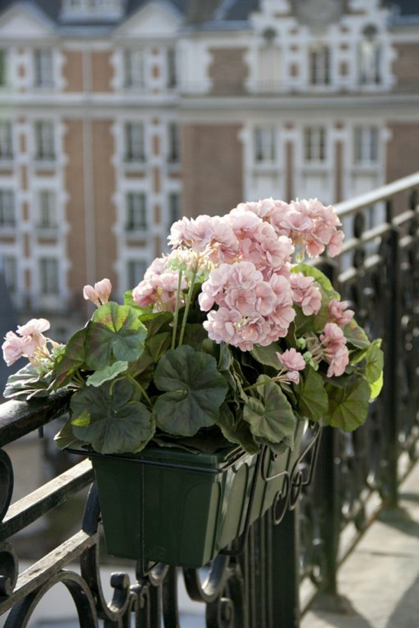 flower box balcony terrace dark elegant design