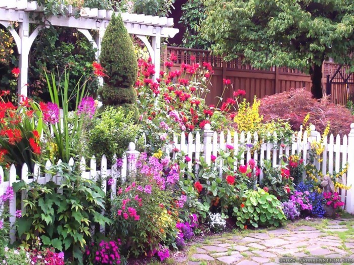 Beautiful summer garden with many flowers