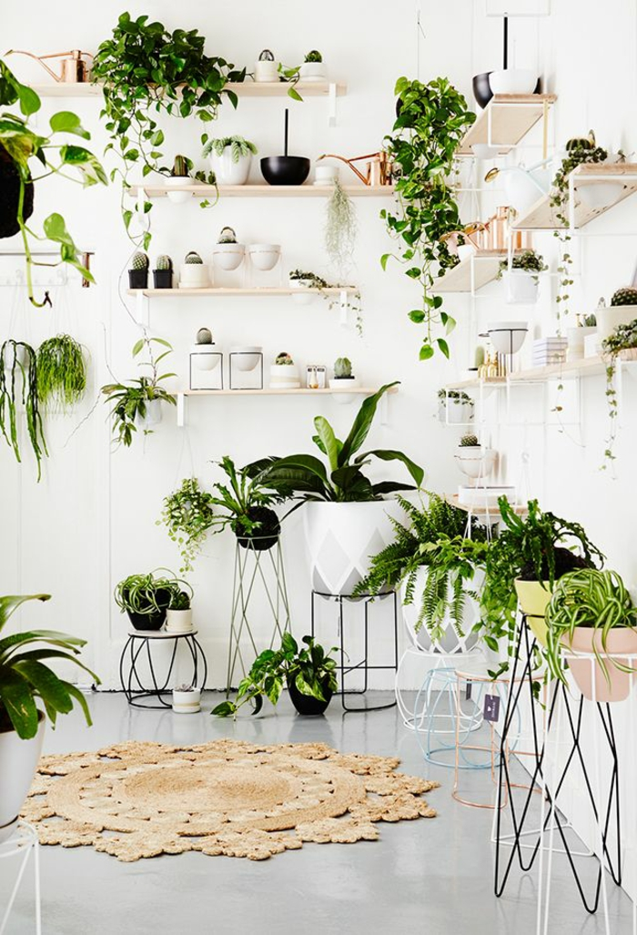 easy-care indoor plants pictures kraetive wall design with green plants