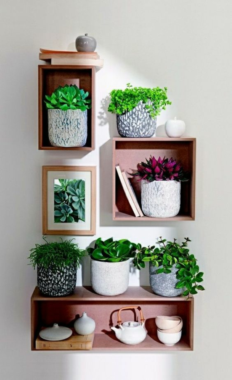 Feng Shui pictures indoor plants positive energy wall shelves