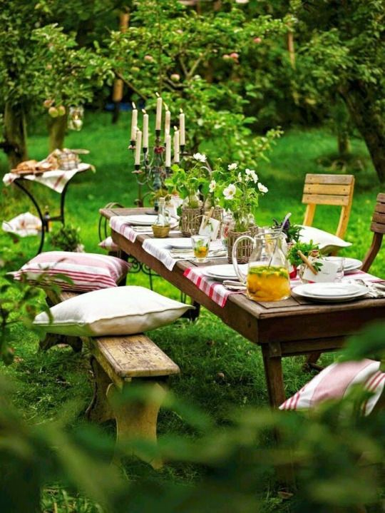 picnic ideas in the middle of the forest