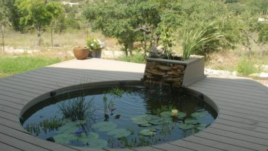 Photo of Fishpond – 20 Inspirational Picture Ideas for Garden Ponds with Fish!