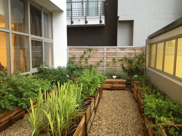terraces ideas vegetables grow boi garden